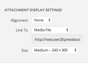 Customize image display