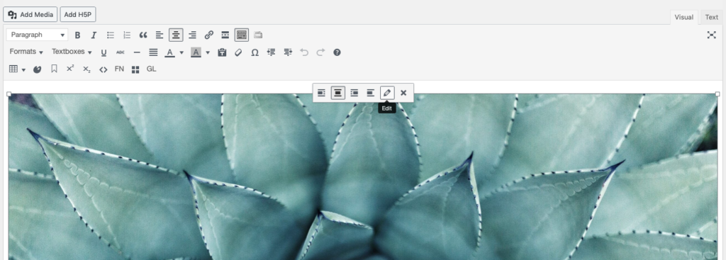 Edit icon on top of an image in the visual editor
